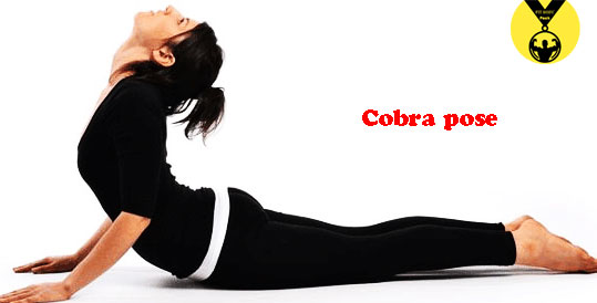 cobra pose for weight loss at home